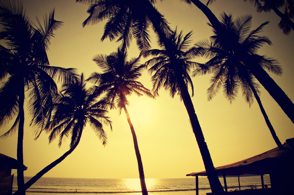 Baga Beach | Goa