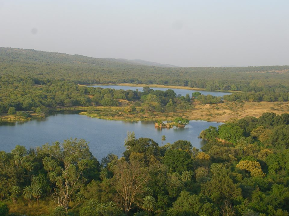 Ranthambore National Park | Hill Places