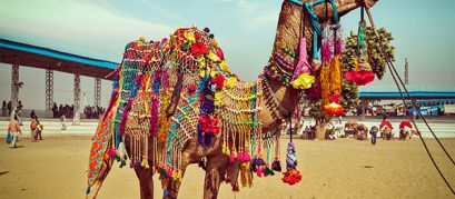 A Handy Guide to Pushkar Fair 2019