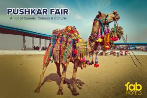 A Handy Guide to Pushkar Fair 2016