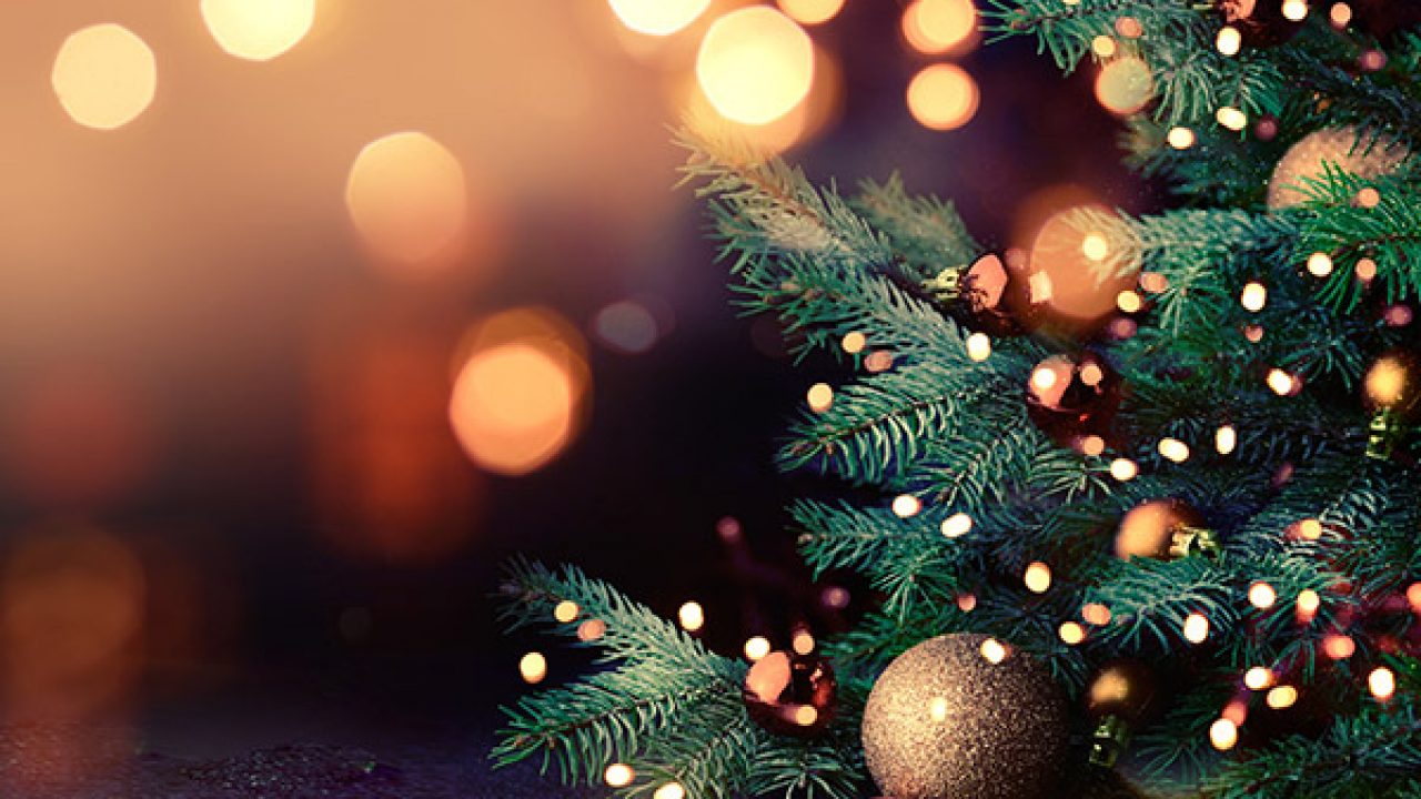 2021 Christmas Events 2021 Christmas Celebrations In Your City Fabhotels