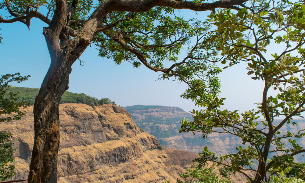 Jawhar | Offbeat Weekend Getaways near Mumbai