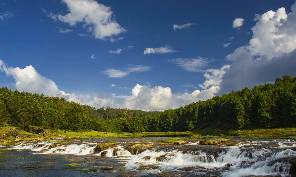 Pykara Waterfalls and Lake
