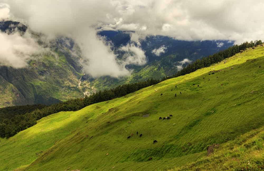 Auli | Best Places to Visit in December