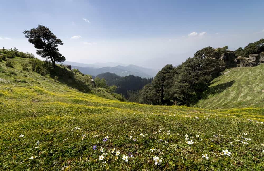 Narkanda | Hill Stations near New Delhi