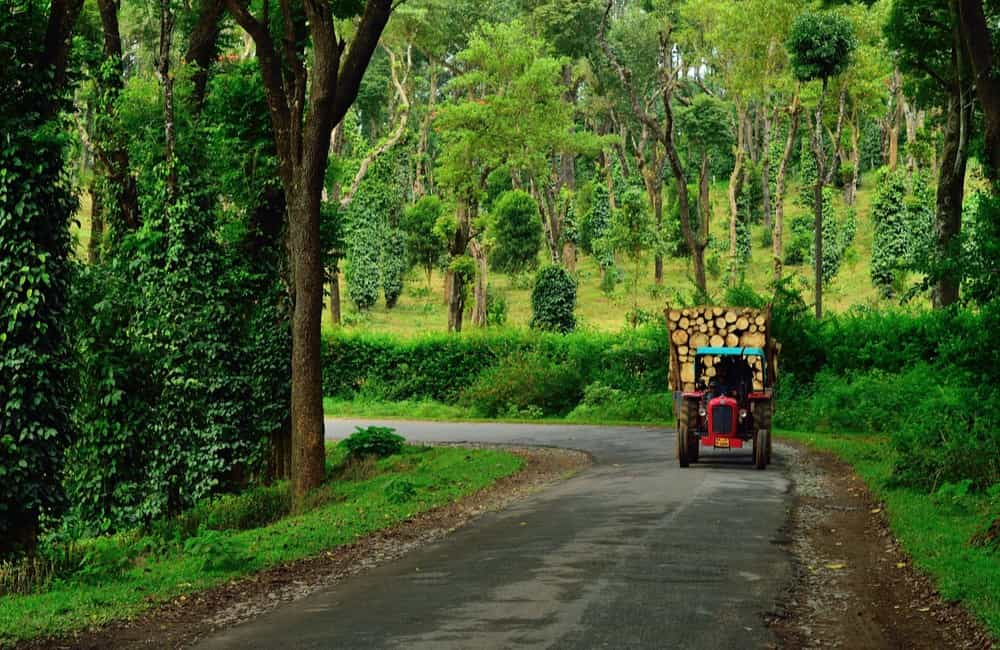 Coorg | 3 of 11 Hill Stations near Bangalore within 300 km