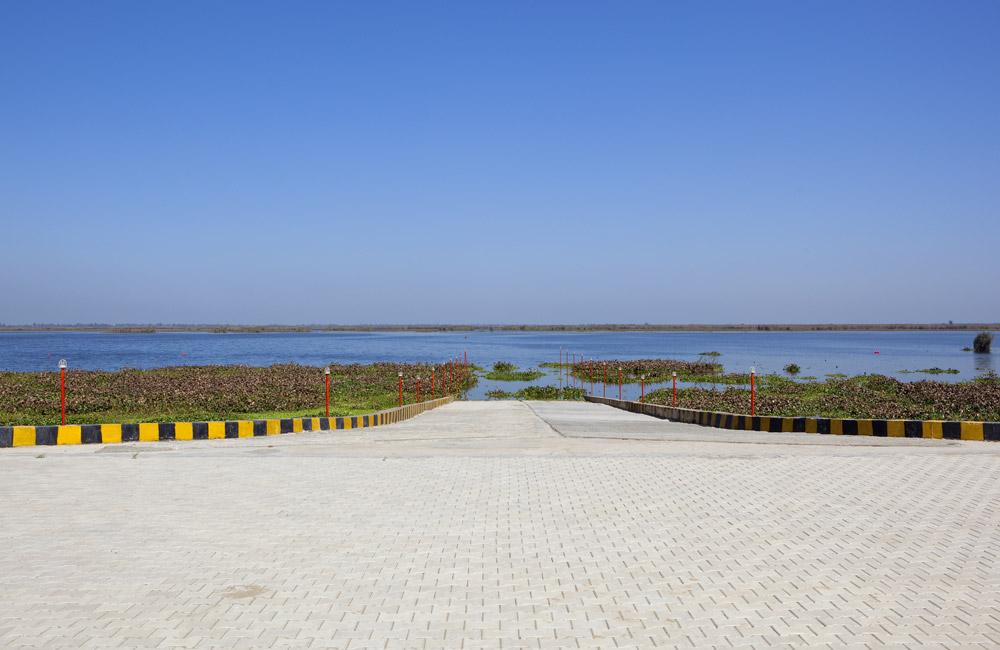 Harike Wetland, Amritsar
