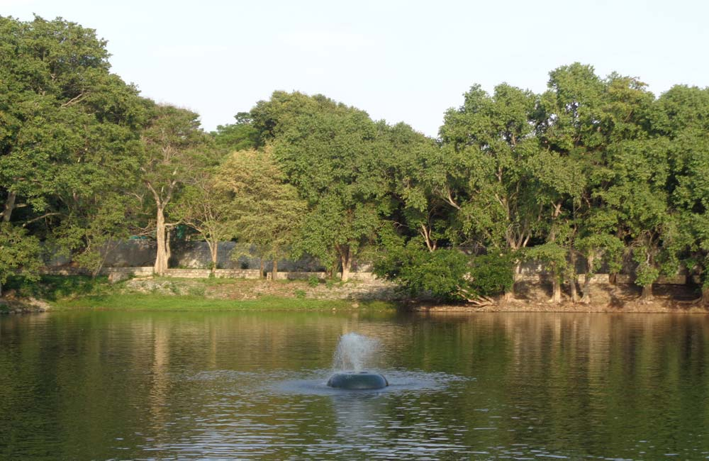 Parks and Wildlife Areas | Bangalore