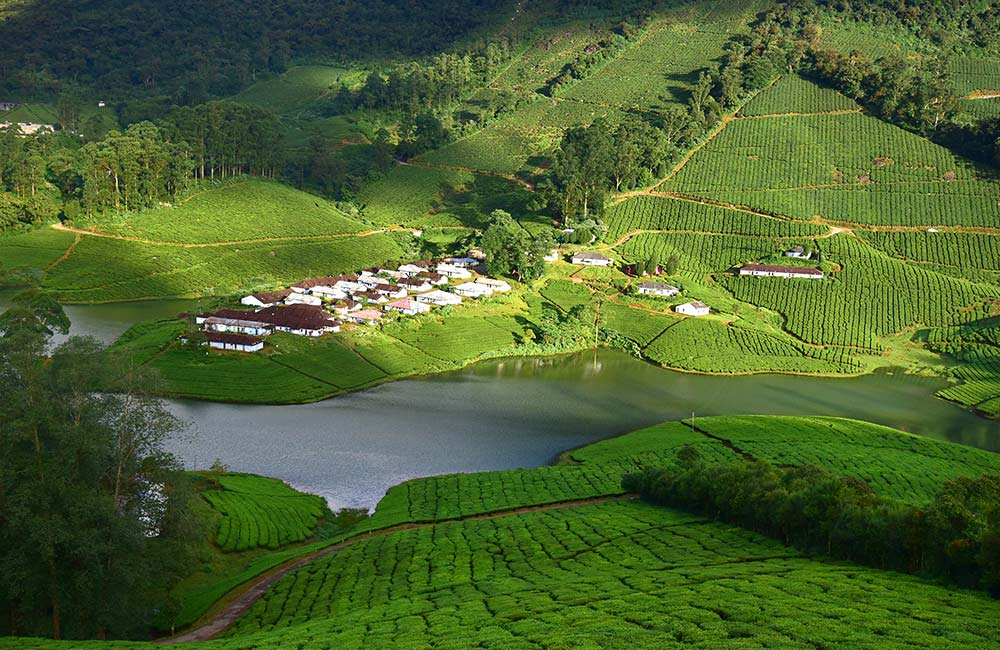 Meghamalai | Hill Stations near Chennai within 500 km