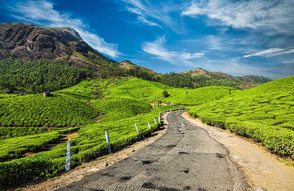 Munnar Tea Plantations | Best Bollywood Locations in India
