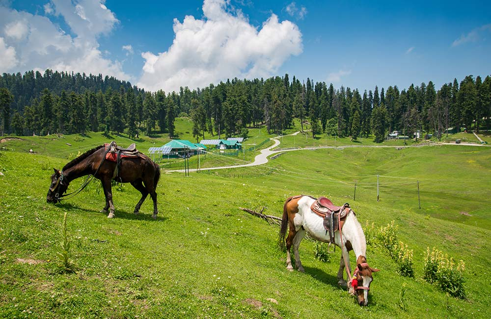 Gulmarg | Best Bollywood Locations in India