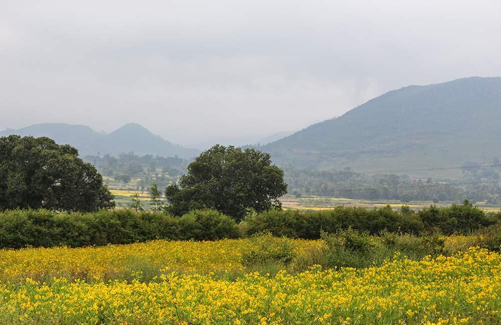 Araku Valley(#11 of 11 Best Visakhapatnam Tourist Places)