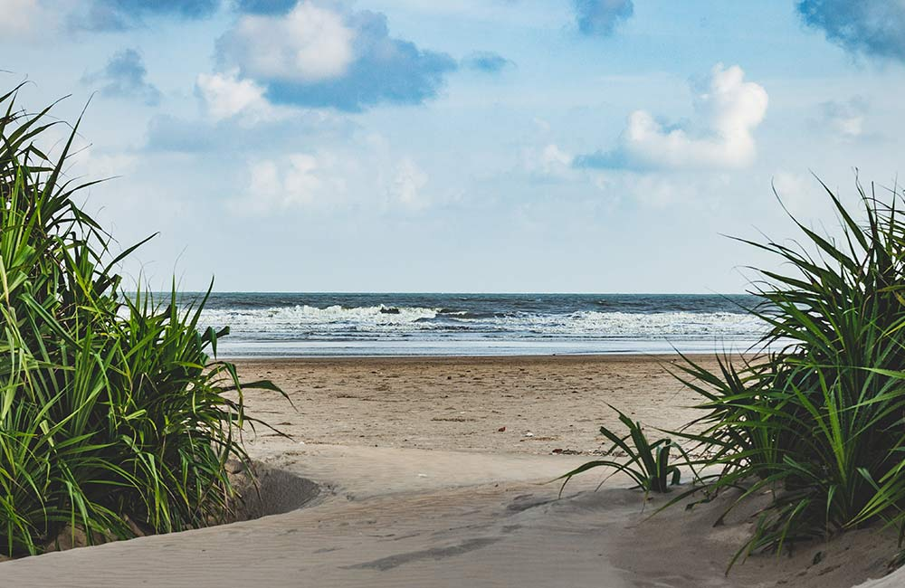Tajpur Beach | Among the Best Beaches near Kolkata