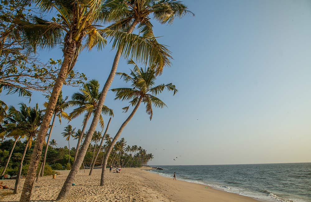 Marari Beach | Among the Best Beaches near Kochi