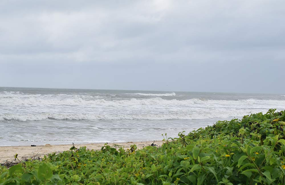 Panambur Beach | Beaches near Bangalore within 400 km