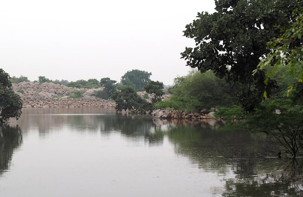 Asola Bhatti Wildlife Sanctuary