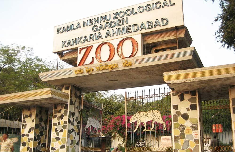 Kankaria Zoo | Among the Best Tourist Places in Ahmendabad