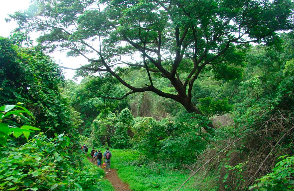 Sanjay Gandhi National Park | Fun Places to Hangout in Mumbai with Friends