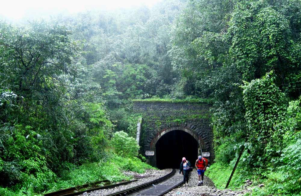 Trekking to Dudhsagar Falls