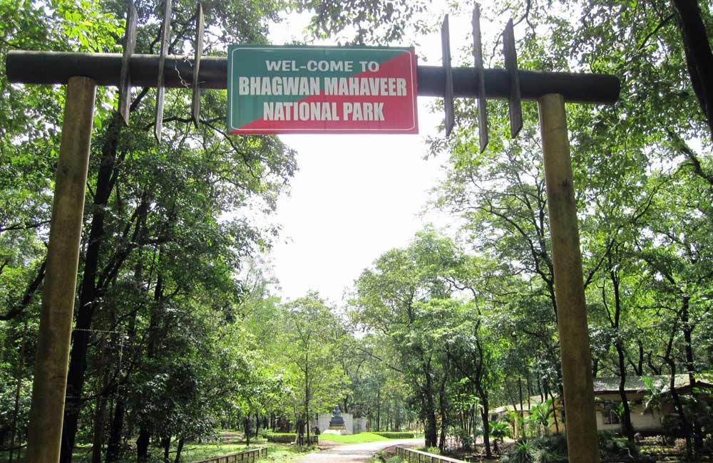 Places to Visit in Goa: Wildlife Sanctuaries – Exotic Nature