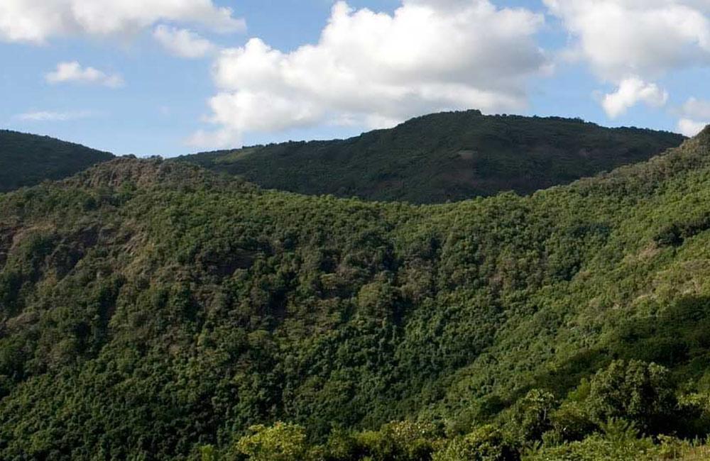 BR Hills   # 20 of 20 Picnic Spots near Bangalore