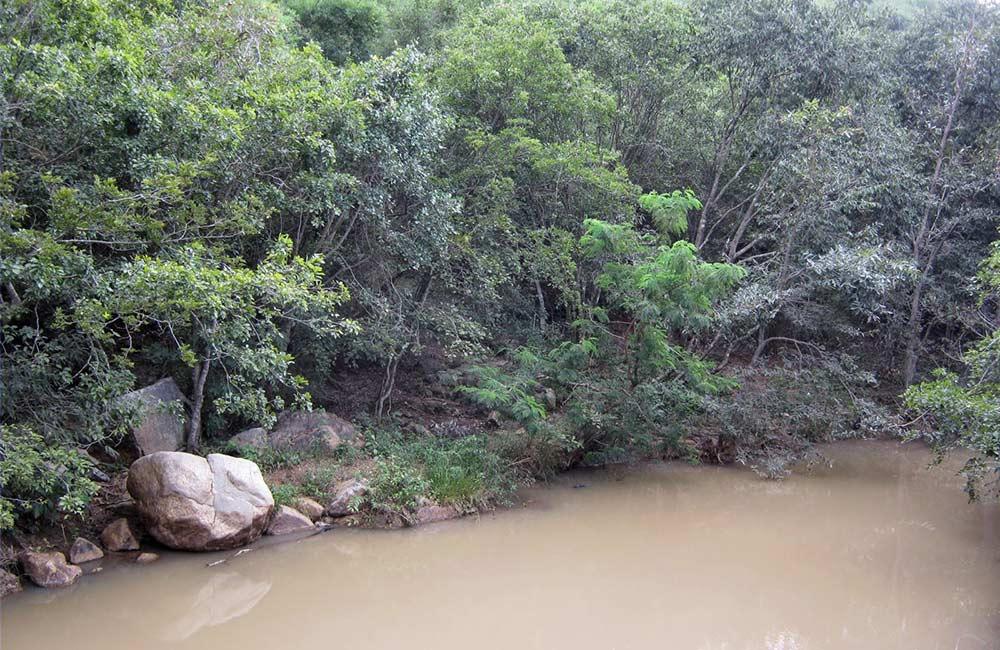 Muthyala Maduvu   # 4 of 20 Picnic Spots near Bangalore