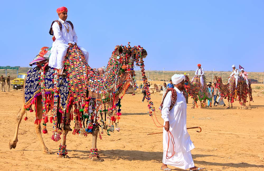 Tourists on Vibrantly Decorated Camels | Long Weekend 2019