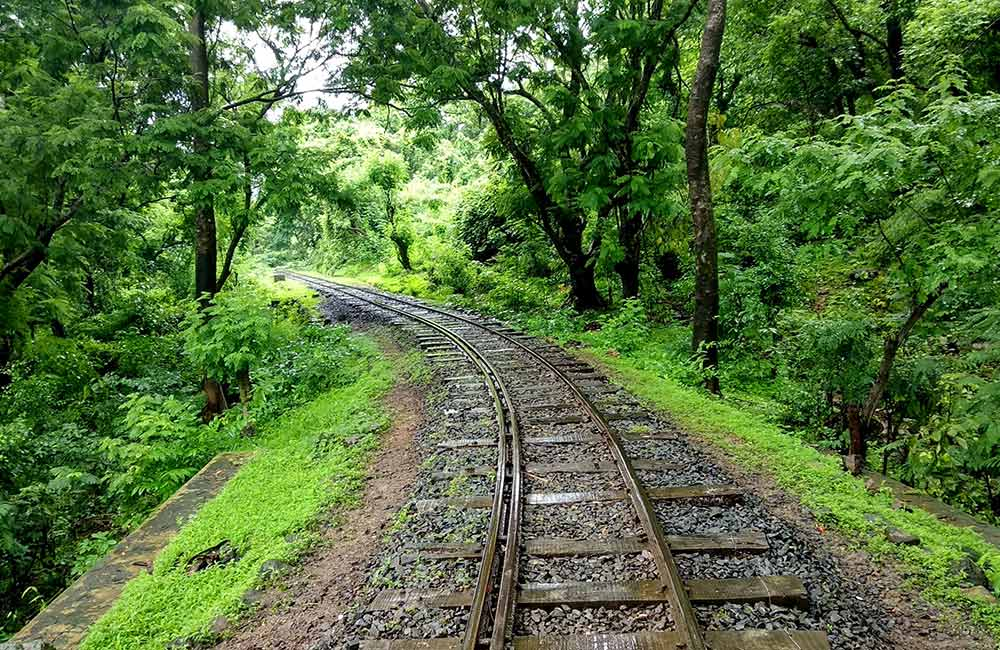 Sanjay Gandhi National Park | #3 of 10 Best Things to do in Mumbai for Kids