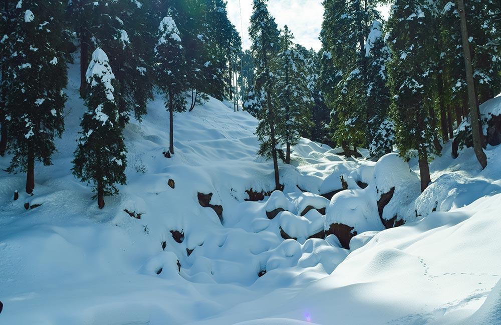 Dalhousie,Winter destinations in India