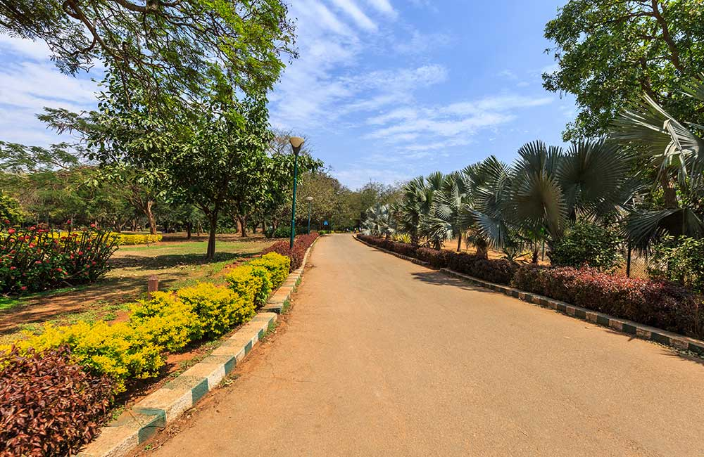 Lal Bagh | #1 of 15 Places to Visit in Bangalore with Friends
