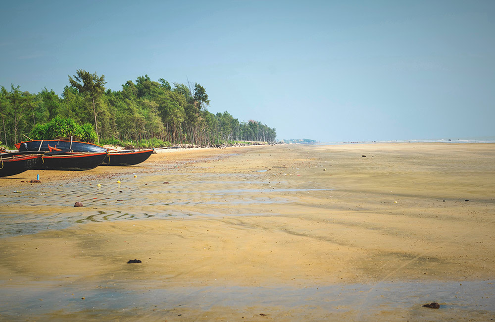 Tajpur | #11 of 11 Best One Day Trip from Kolkata