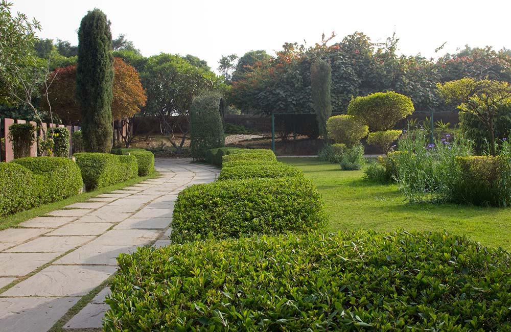 Leisure Valley, Chandigarh
