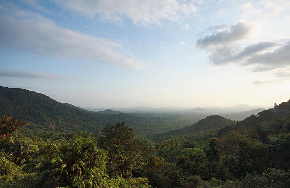 Mollem National Park, South Goa