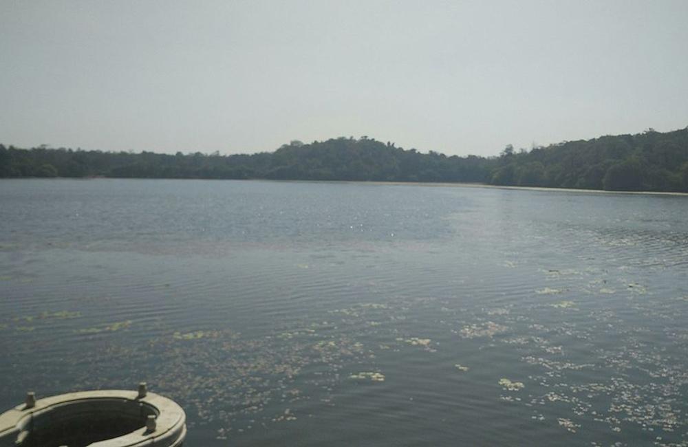 Honnamana Kere Lake, Coorg