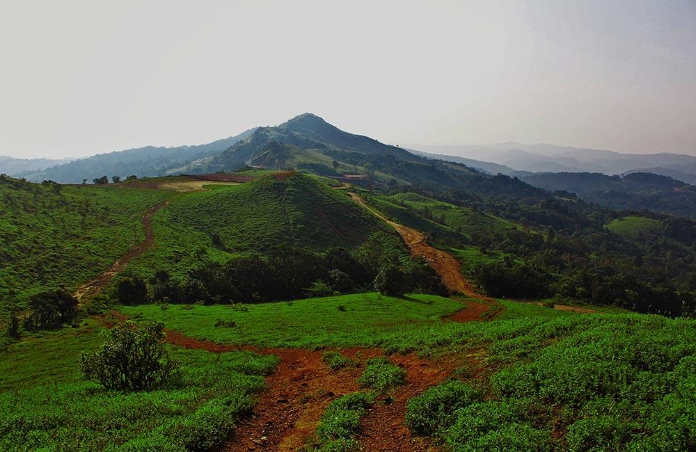Mandalpatti Viewpoint, Coorg