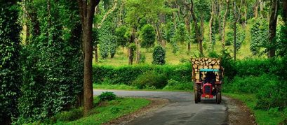20 Amazing Places to Visit in Coorg