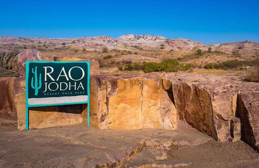 Rao Jodha Desert Rock Park | #4 of 20 Things to Do in Jodhpur