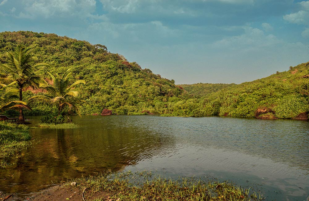 Arambol Sweet Water Lake, Goa