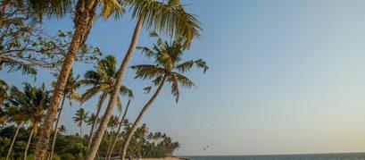 8 Best Beaches near Ahmedabad for a Fun Getaway