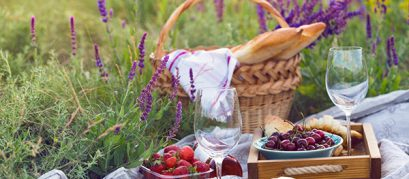 11 Best Picnic Spots in and around Ahmedabad
