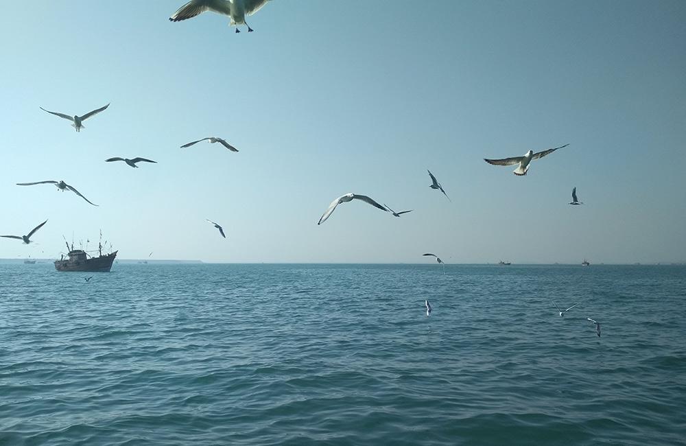 Beyt Dwarka Beach