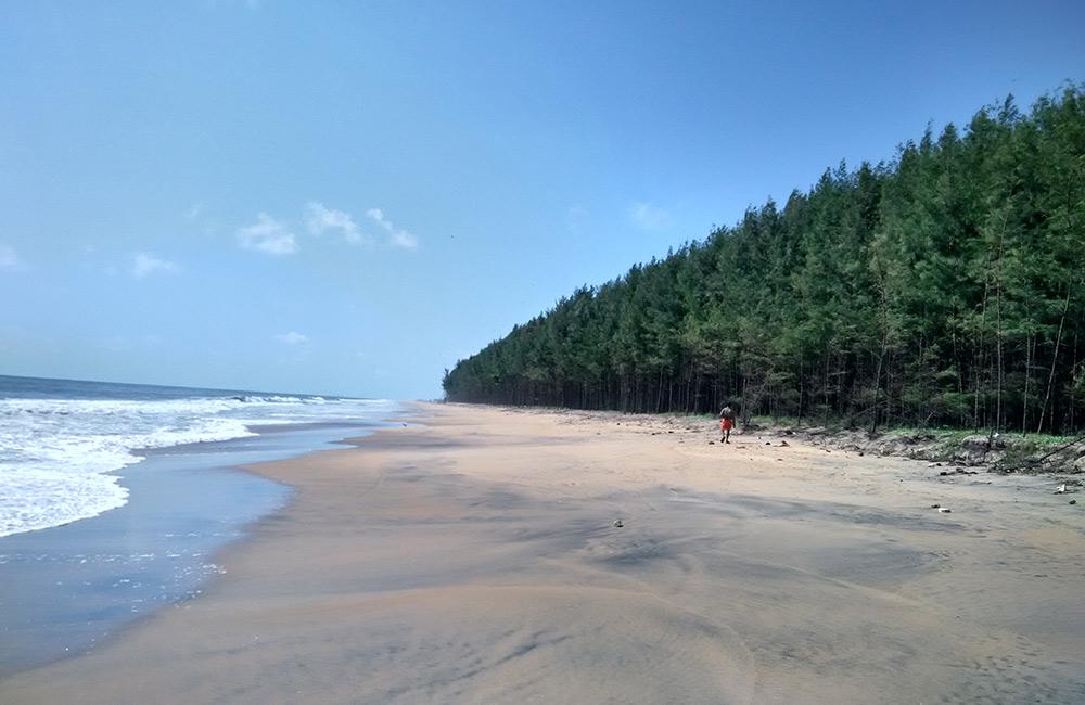 Chavakkad Beach,Thrissur