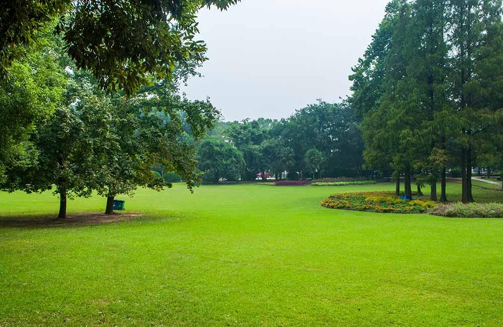 Meghdoot Upvan, Indore