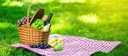 13 Top Picnic Spots in and around Mahabaleshwar