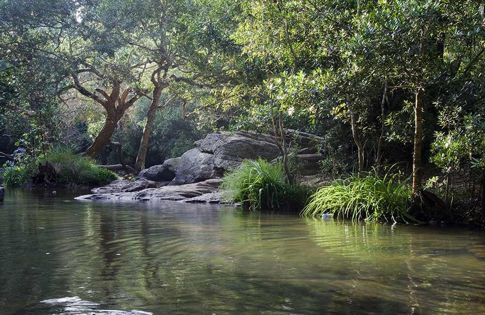 Nisarga Dhama, Mangaluru