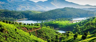 Unmissable Things to Do in Munnar