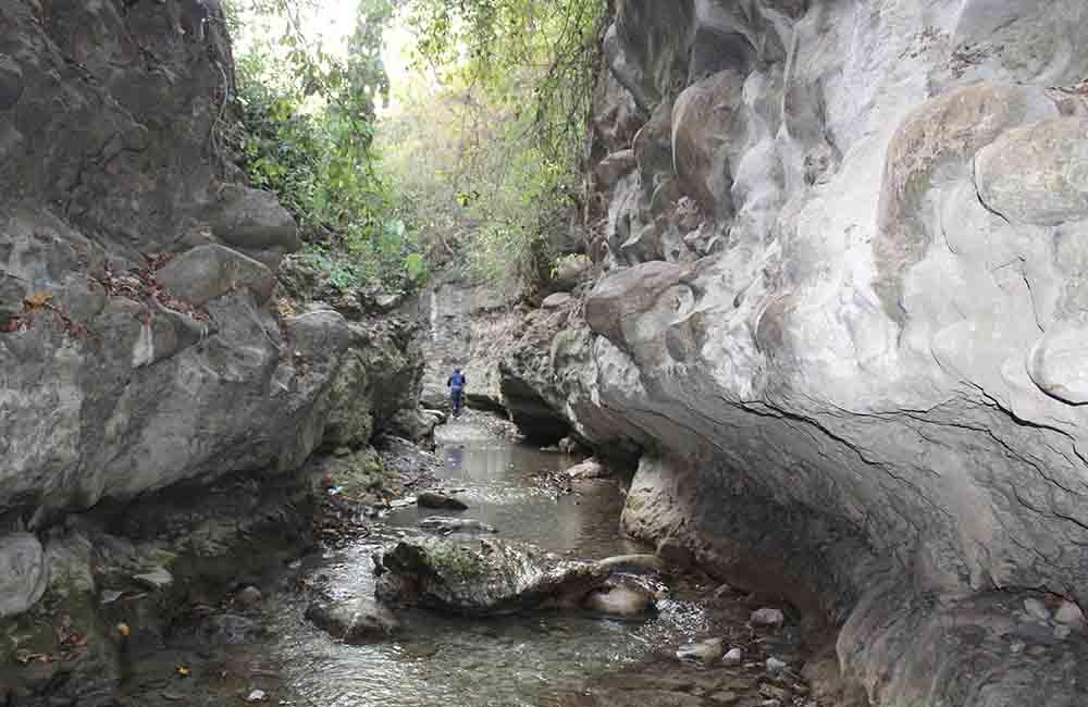 Dehradun | Best Places to Visit in March