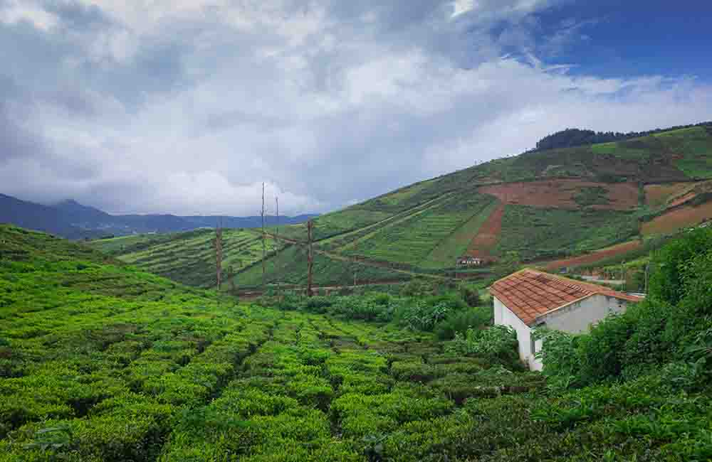 Coorg | Places to Visit in March