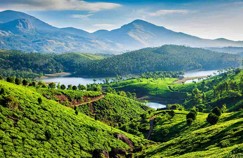 Munnar | Places to Visit in March