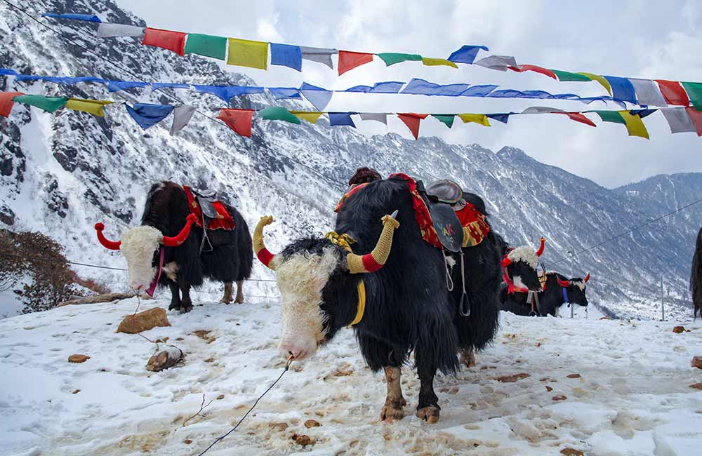 Sikkim   #3 of 7 Offbeat Places to Visit in India